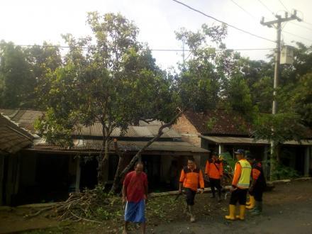 Kerjabakti Massal pembersihan ranting pohon yang mengganggu saluran Listrik